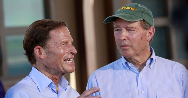 Udall Won't Seek 2020 Reelection