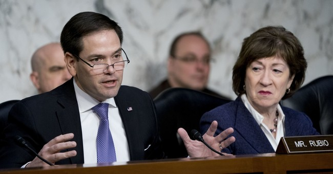 Rubio Grills Facebook and Twitter Heads on Handling of Authoritarian Regimes Asking Them to Quell Dissent