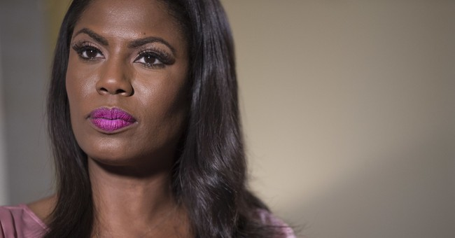 Omarosa Says She's Part of the 'Resistance' and Will Spend Rest of Midterm Election Season Denouncing Trump