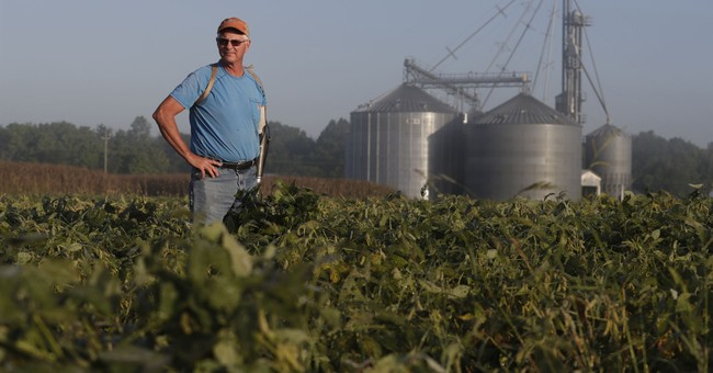 Increasingly Angry Farmers Blame Trump, Not China