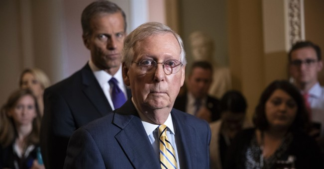 McConnell Lays Down the Law on Protestors Targeting Senate GOP: 'We Will Not Be Intimidated'