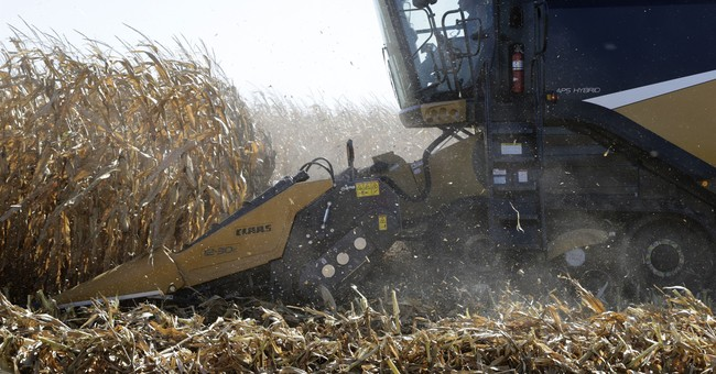U.S. Farm Exports To China Surge