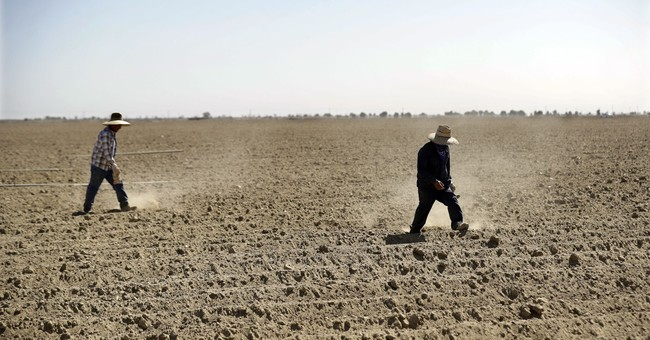 Suspect Science Threatens US Farming – Again