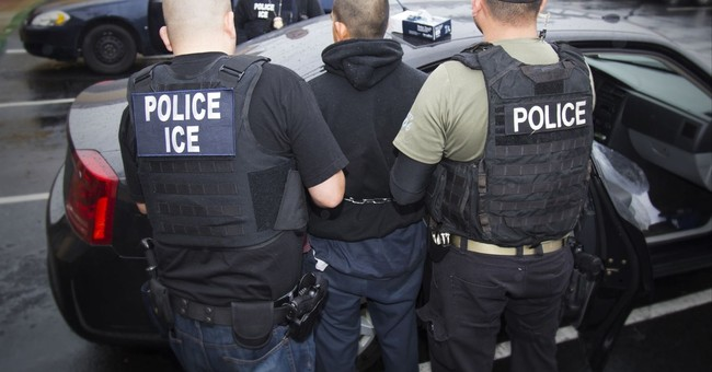 Former ICE Chief: We've Arrested More Than 2,000 Sexual Predators