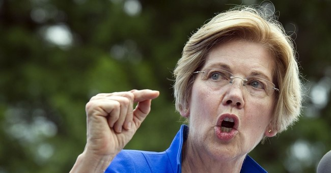 Liz Warren Just Targeted Fellow Dems Who Are Vulnerable in Midterm Elections