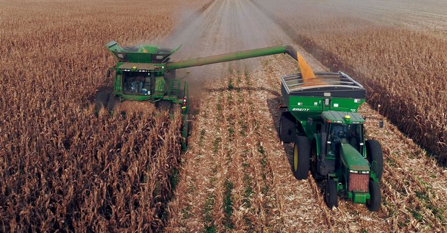 Trade, Farm Subsidies, And Mitchell's Law