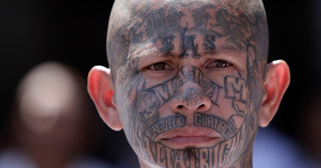 Nearly Two Dozen MS-13 Members From Central America Charged For Horrifying Murders in 'Sanctuary' California