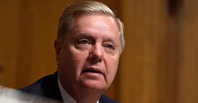 Lindsey Graham: Democrats Have Lost Their Minds