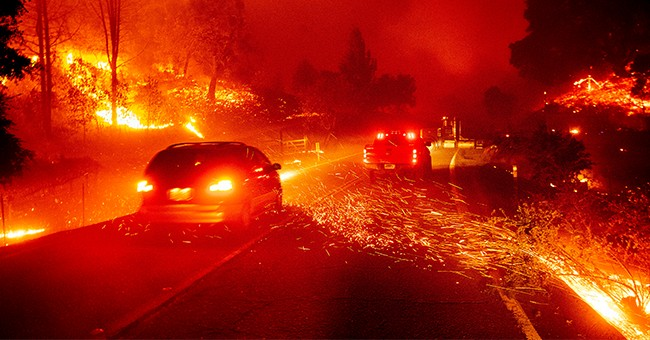 Suspected Arsonist Allegedly Attempts to Start Wildfire. Oregon Woman Has a Surprise for Him