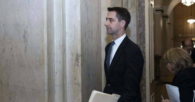 Sens. Cotton and Loeffler Ask AG Barr to Investigate 'Apparent Racial Segregation' on College Campuses