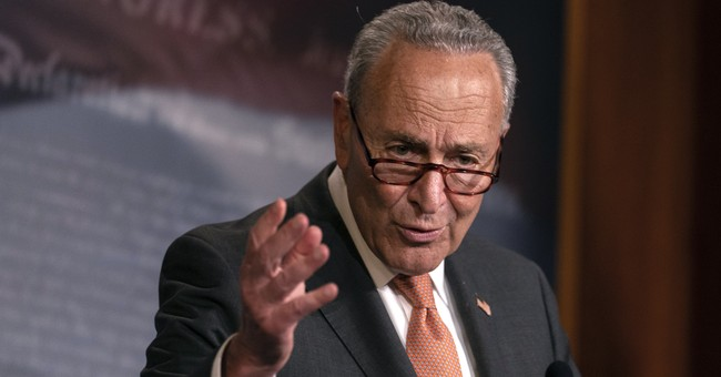 Sen. Schumer Says His Party Will 'Change America' if Democrats Win Georgia Senate Seats