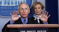 GOP Congressman Asks Fauci THE Question That's on Everyone's Mind Right Now