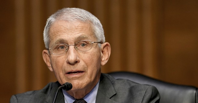 Rand Paul Seeks DOJ Criminal Referral to Hold That Lying Sack Fauci Accountable