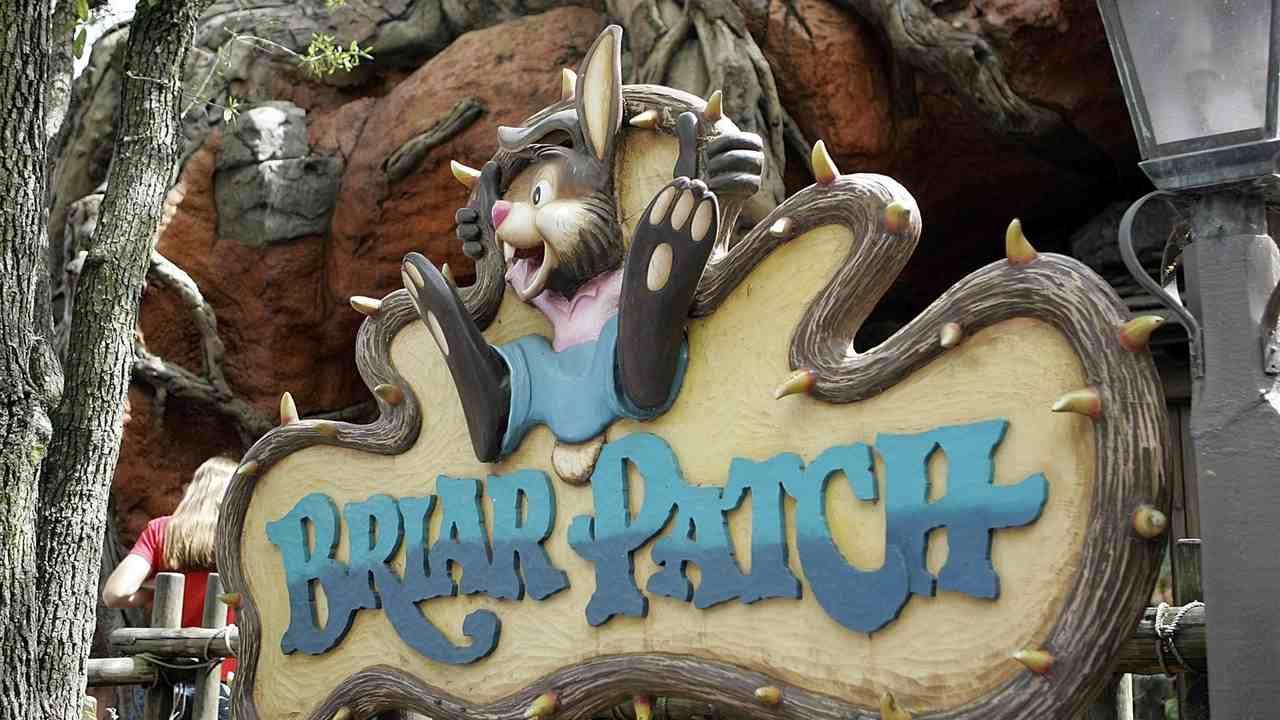 Cancel Culture Comes for Disney's Splash Mountain