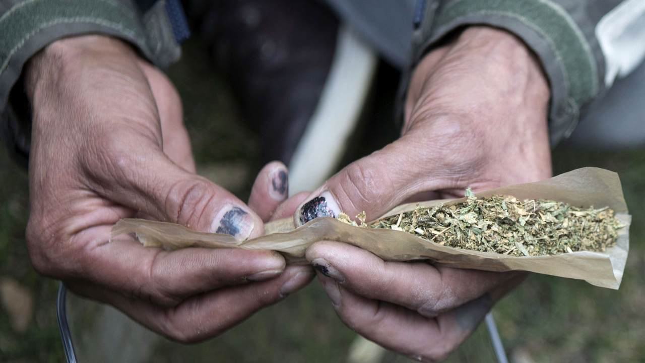 After Canada legalizes pot, industry eyes rest of the world - Breaking News