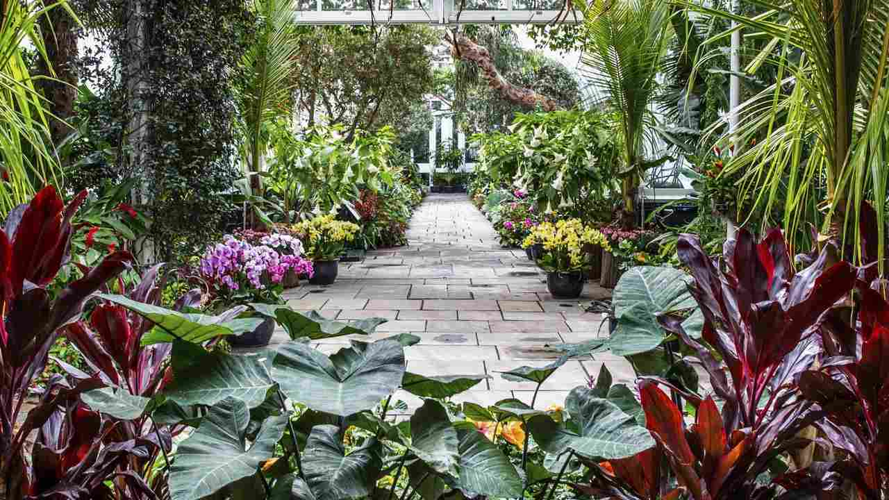 Columbus Botanical Garden to host Jazz in the Garden concert - WTVM ...
