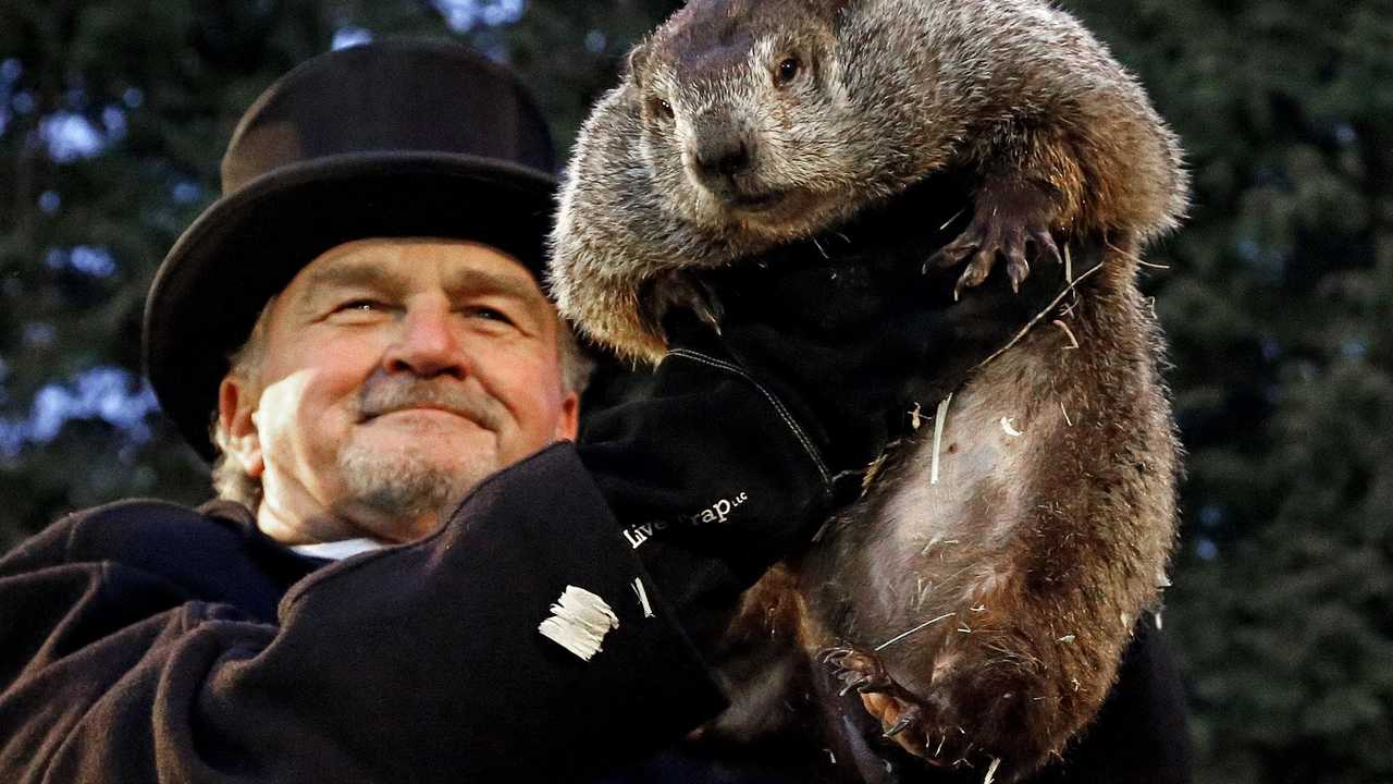 PETA Demands America Changes Its Groundhog Day Tradition