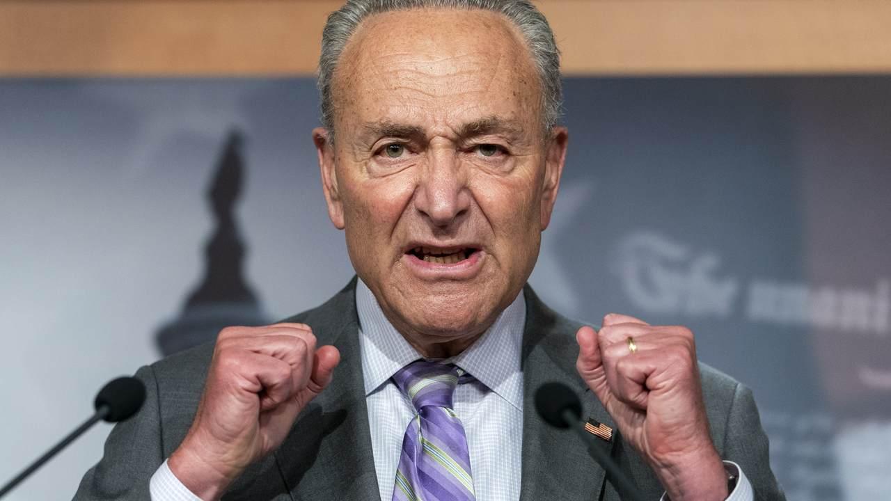 Report: Senate Democrats 'Vent' at Chuck Schumer Over Election Failures